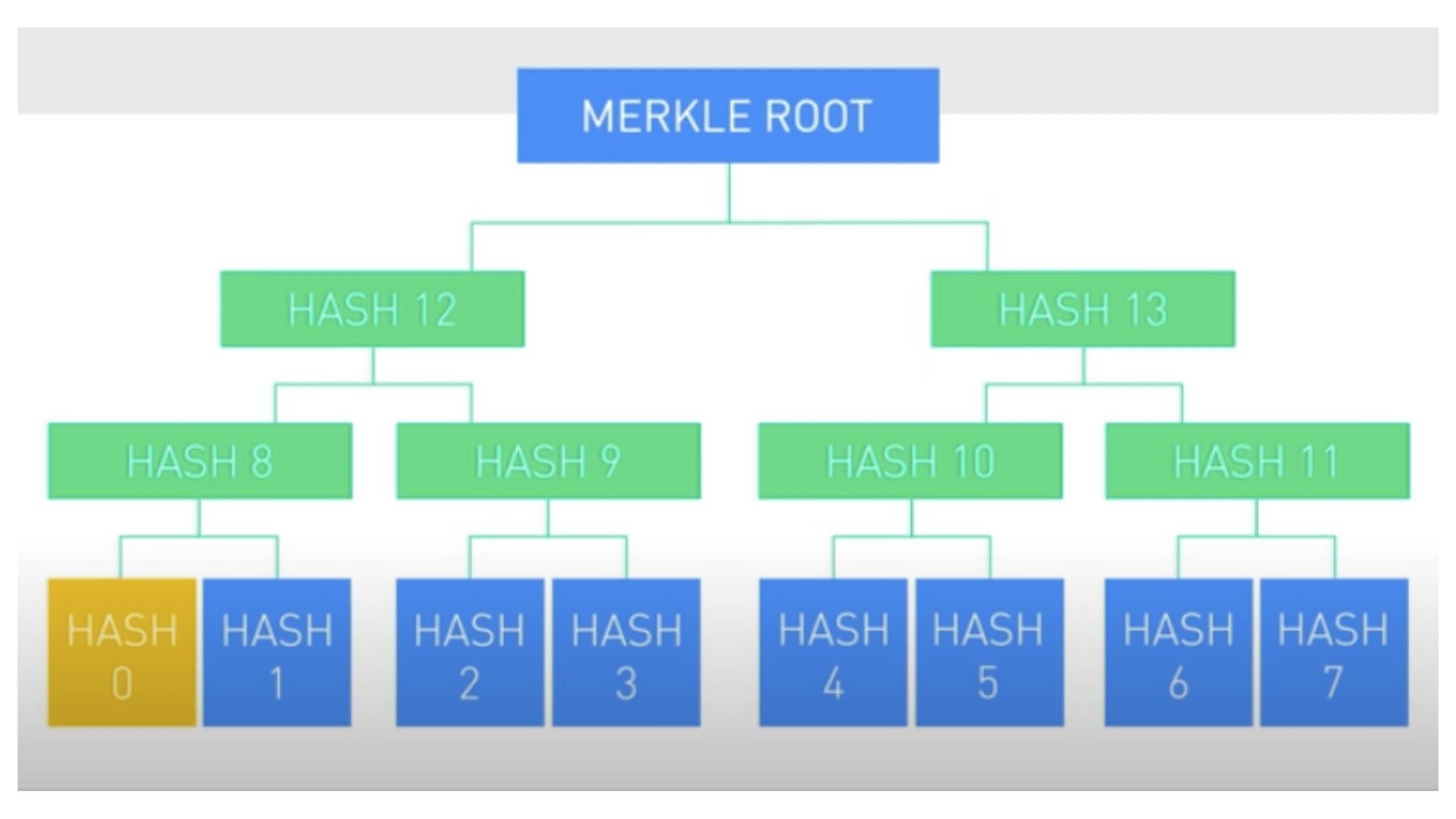 """Po hašovaní všetkých transakcií z bloku sú hashe usporiadané do stromových štruktúr nazývaných """"Merkle tree"""". Jednotlivé hashe sú opakovane spájané do párov, až kým sa nedosiahne vrchol stromu, tzv. koreňový uzol Merkle stromu (ang. Merkle root). Merkle root predstavuje hash, ktorý zastupuje všetky hashe, z ktorých vznikol."""